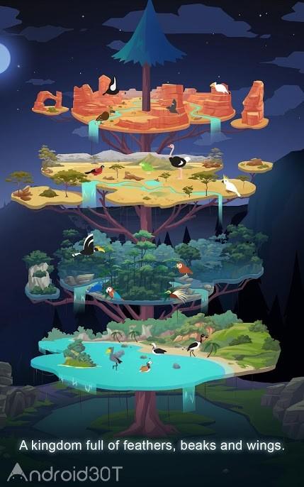 دانلود Birdstopia – Idle Bird Clicker 1.2.9 – بازی شبیه ساز زندگی پرندگان اندروید
