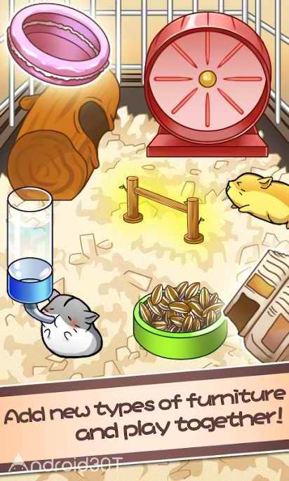 دانلود Hamster Life 4.6.3 – بازی جالب نگهداری از همستر اندروید