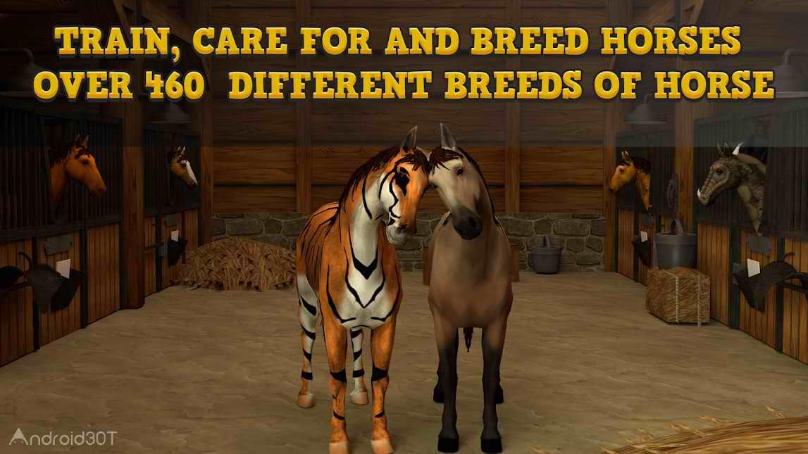 دانلود Horse Academy 3D v50.80 – بازی مهیج اسب سواری برای اندروید