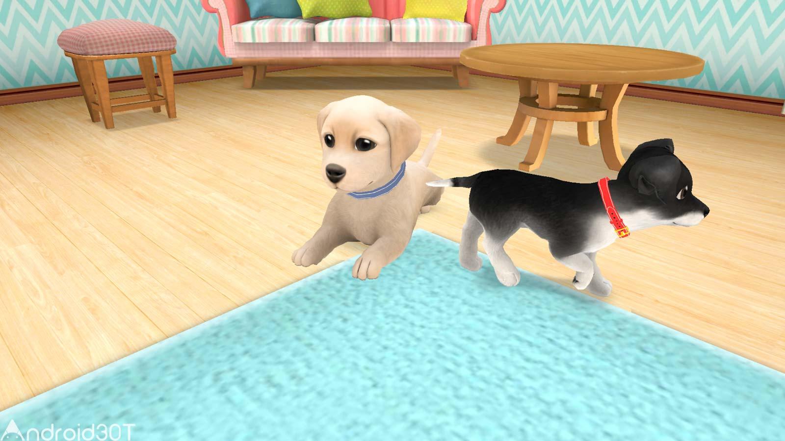 دانلود Lovely Pets Dog Town 1.1.50 – بازی جذاب نگهداری سگ اندروید