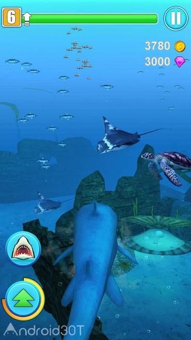 دانلود 1.2 Shark Simulator – بازی شبیه سازی کم حجم اندروید
