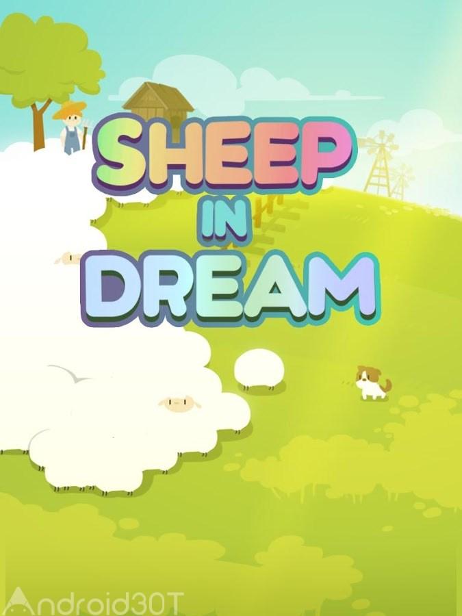 Sheep in Dream