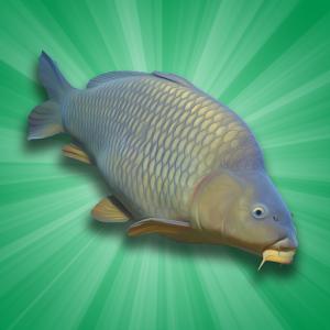 دانلود Carp Fishing Simulator 1.9.8.7 - بازی شبیه سازی ماهی گیری اندروید